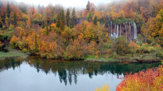 lake with trees in autumn colors